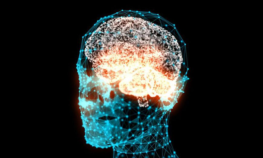 2-brainactivit