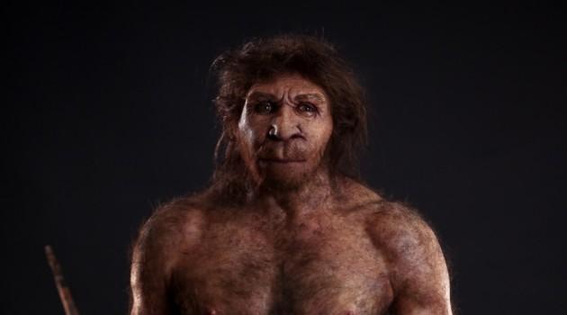 homo-heidelbergensis