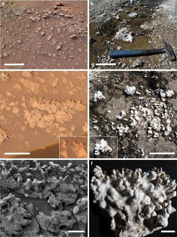 مریخ در سمت چپ و شیلی در سمت راست