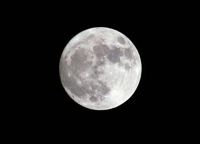 moon-barboni