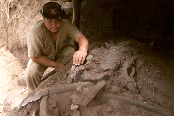 paleontologists-excavate-pre-historic-salvadoran-site