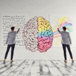تفاوت میان نیمکرۀ راست و چپ مغز چیست؟