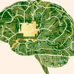 بررسی رابطۀ میان بهره هوشی و اتصال مغزی