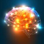 منشاء تکاملی هوش اجتماعی انسان  چیست؟