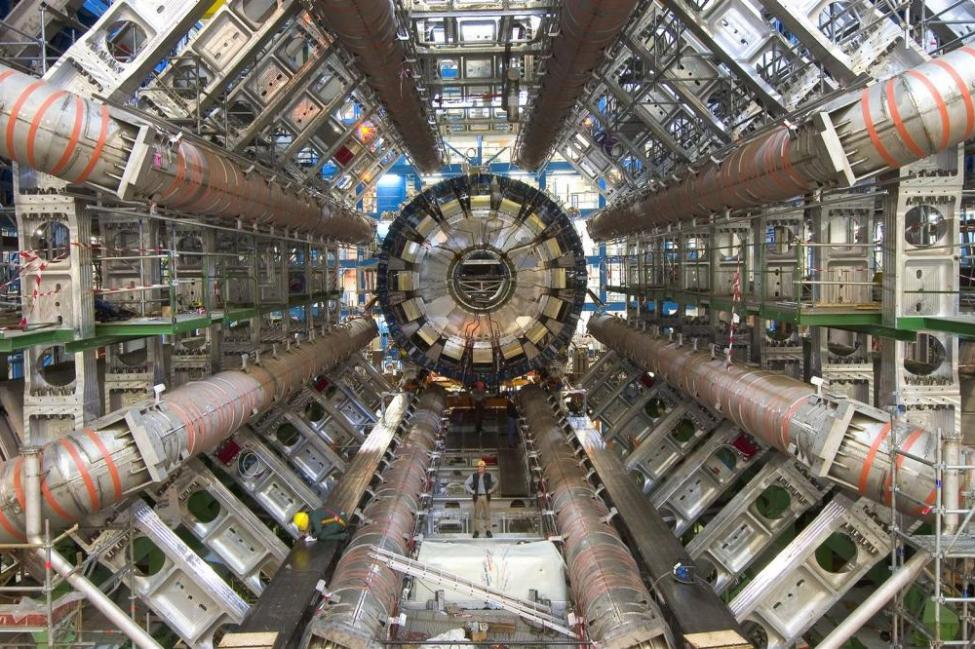 Higgs boson observed decaying into pairs of b quarks