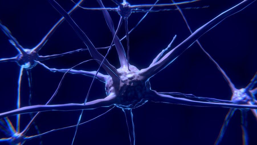 neuralnetwork