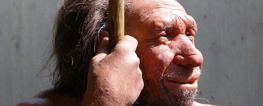 neanderthal VIP