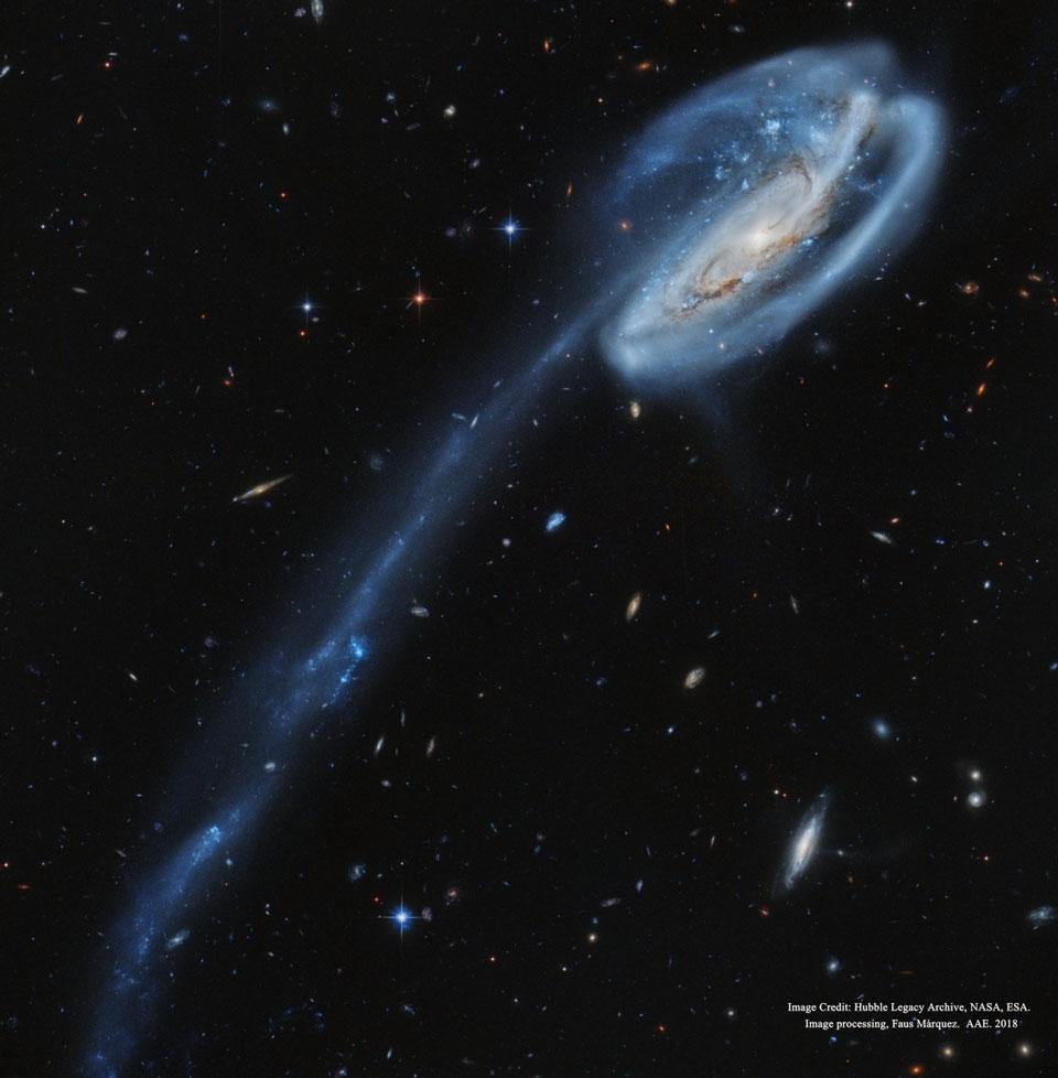 ArpTadpole HubbleMarquez