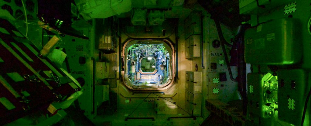 Space Station at nightMicrobes web