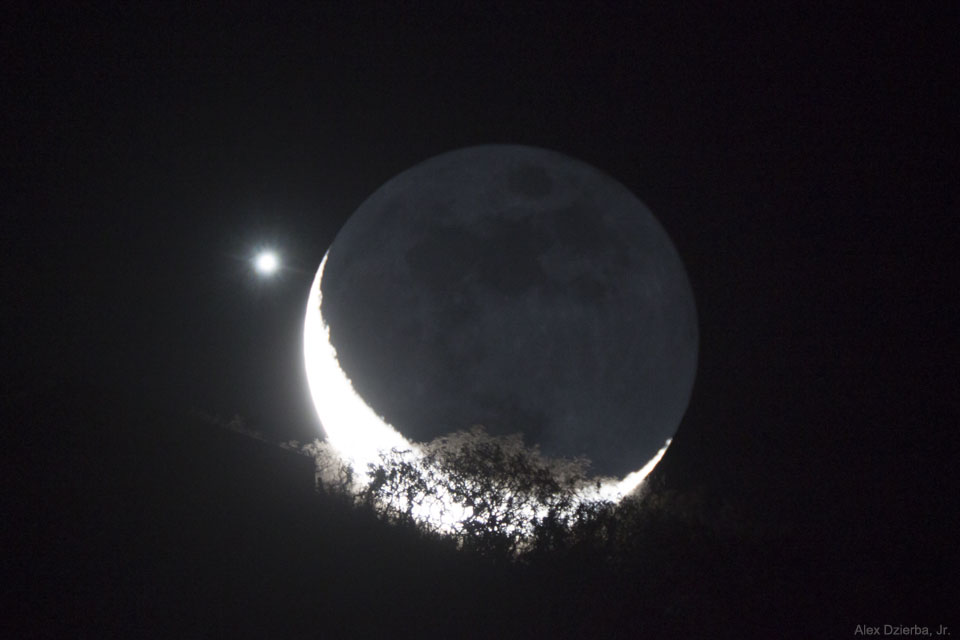 MoonVenus Dzierba