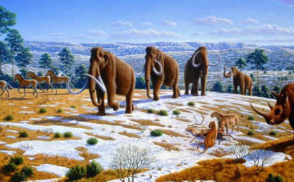 image Woolly Mammoths