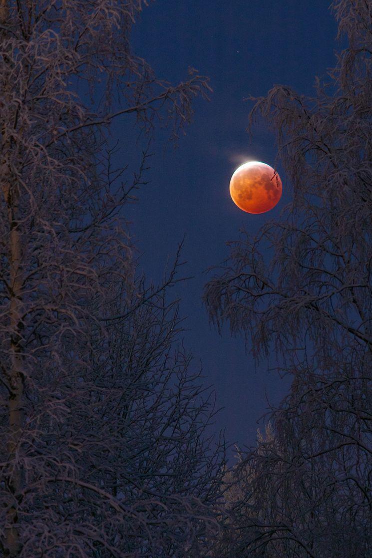 Bloodborne © Keijo Laitala.jpg.optimal