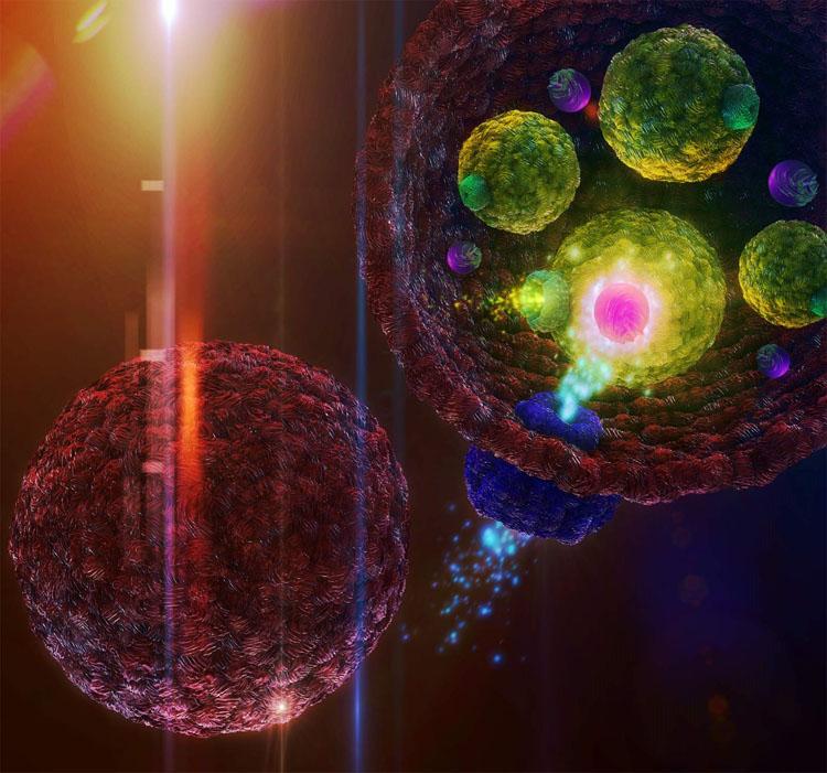 image e Artificial Cells