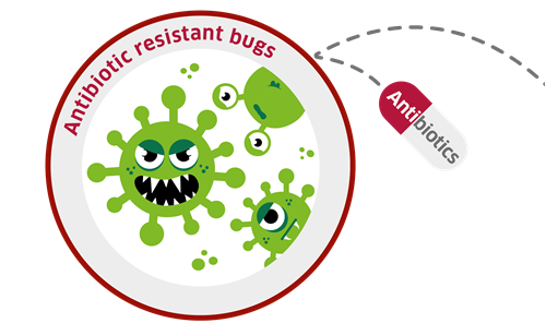 bacteria bob