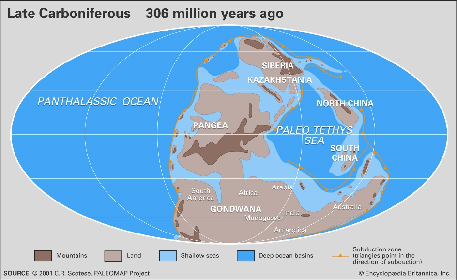 Distribution landmasses regions seas ocean basins locations