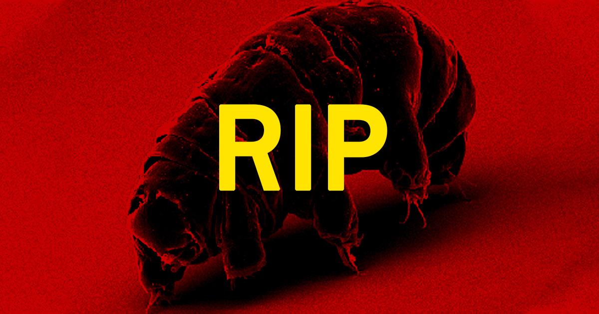 scientists discover way kill tardigrades