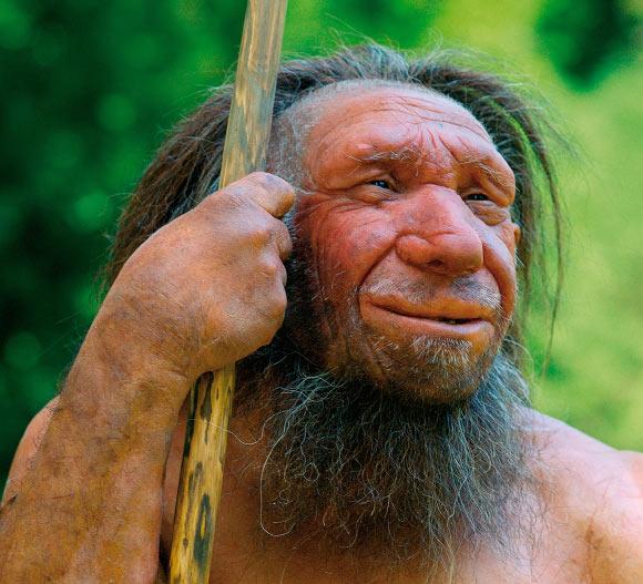 image Neanderthal