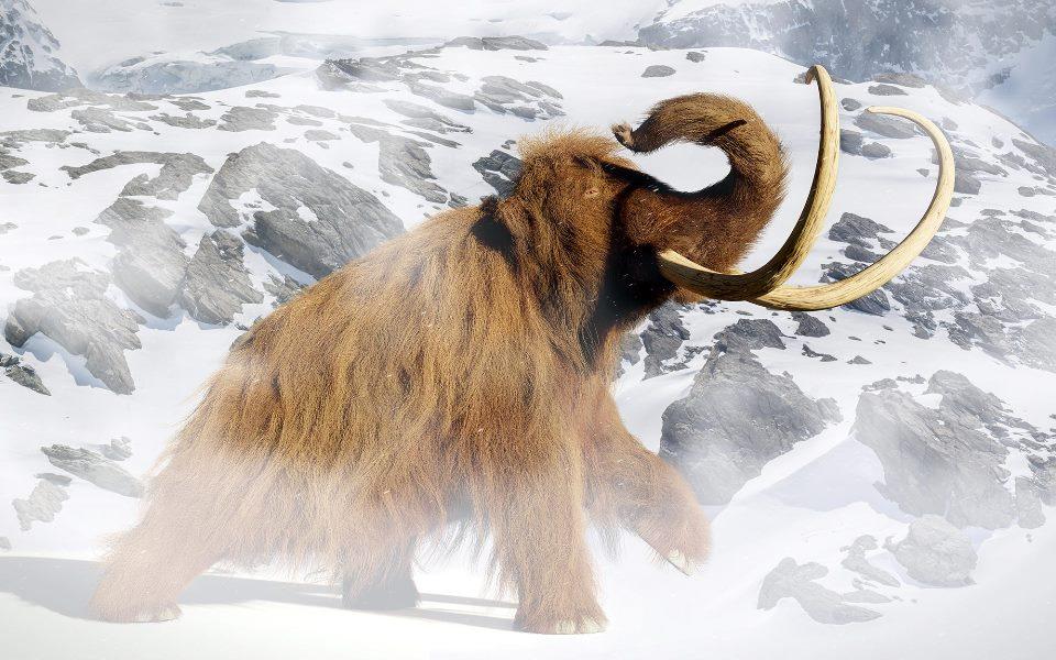 Woolly Mammoth Rendering
