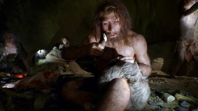neanderthal banner