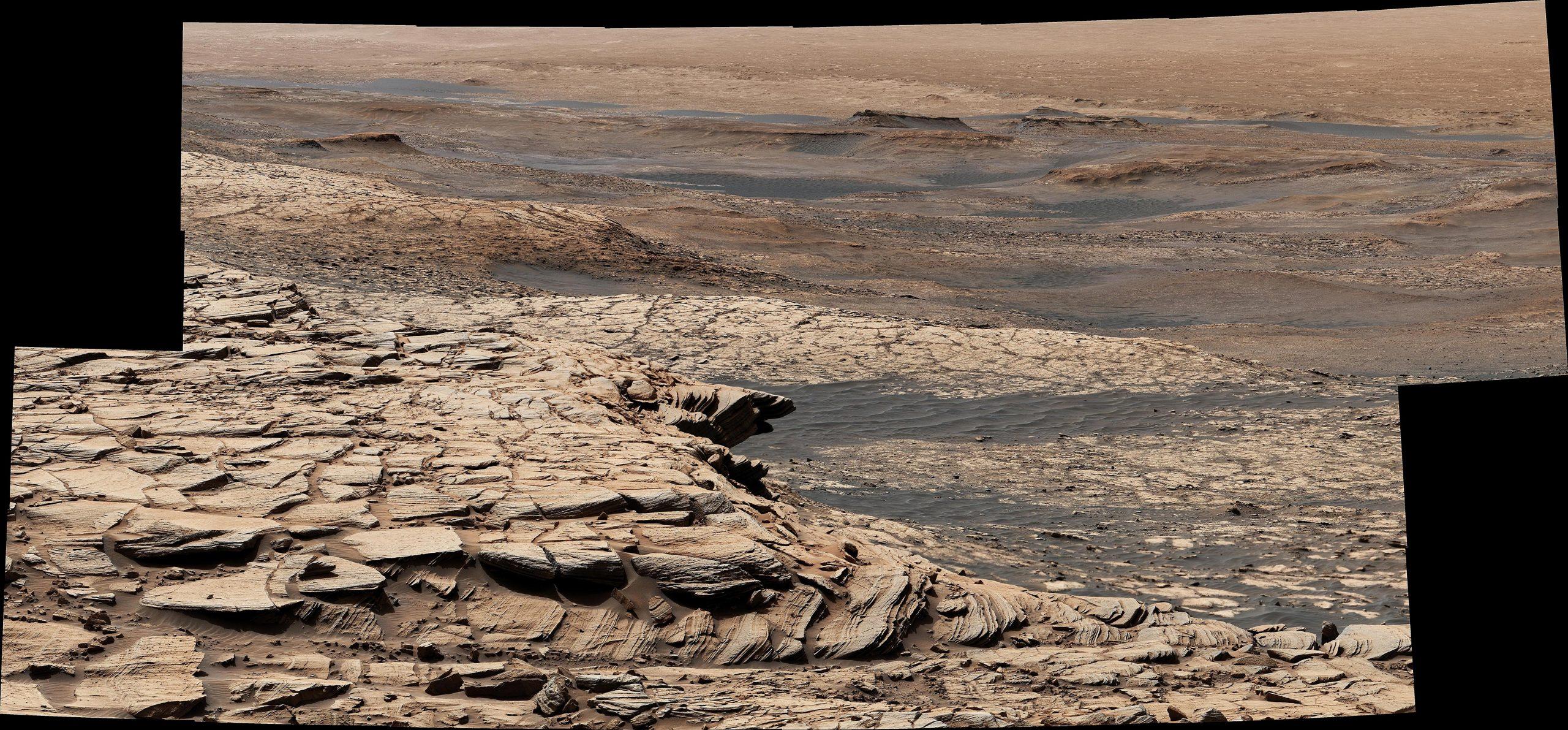 Curiosity Greenheugh Pediment scaled