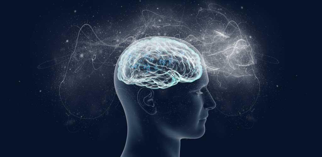 person brain final image