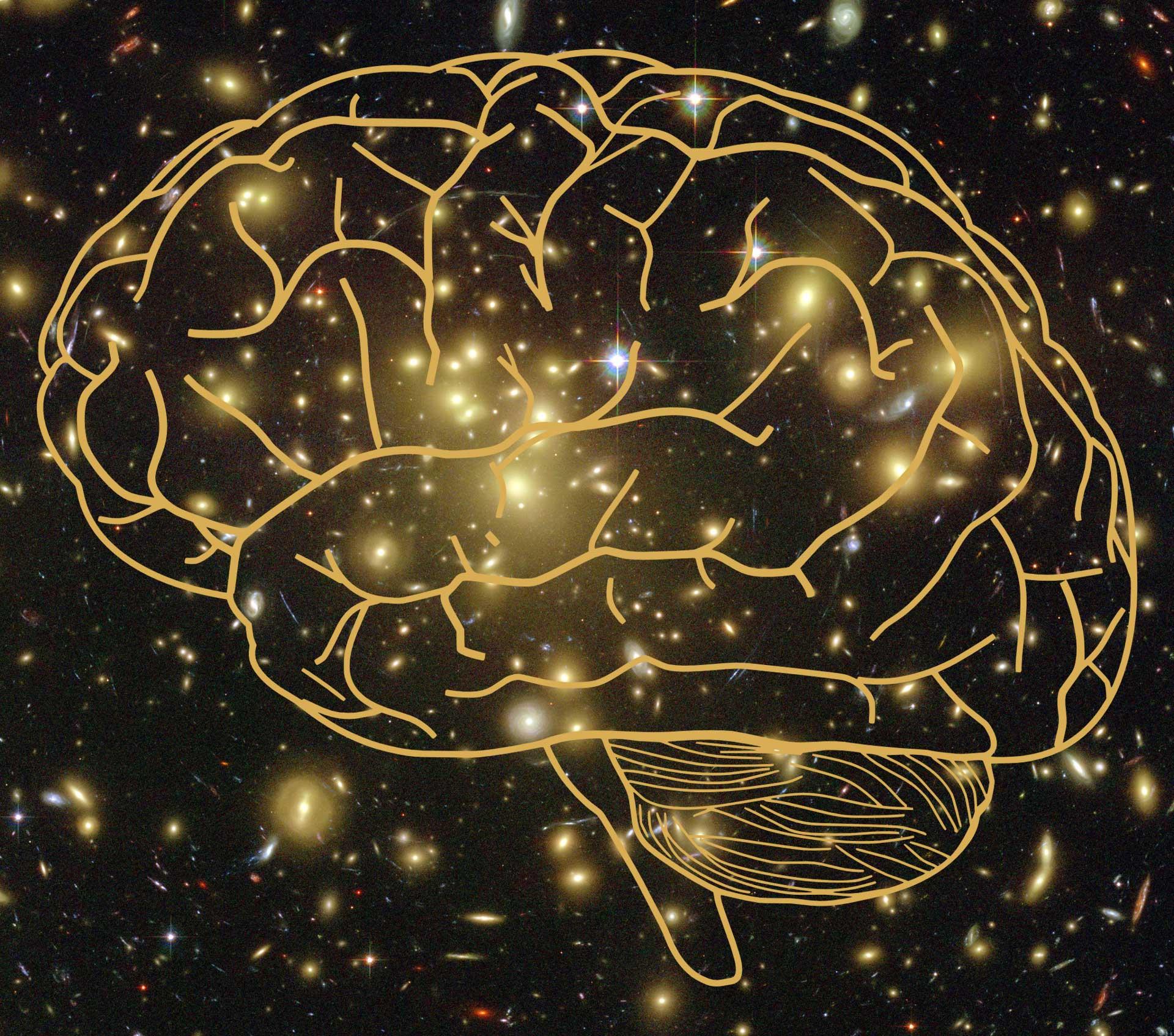 image e Consciousness