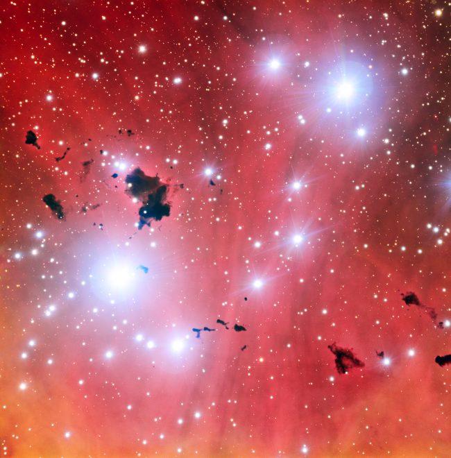 stellar nursery e