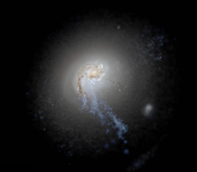image e FIRE Galaxy