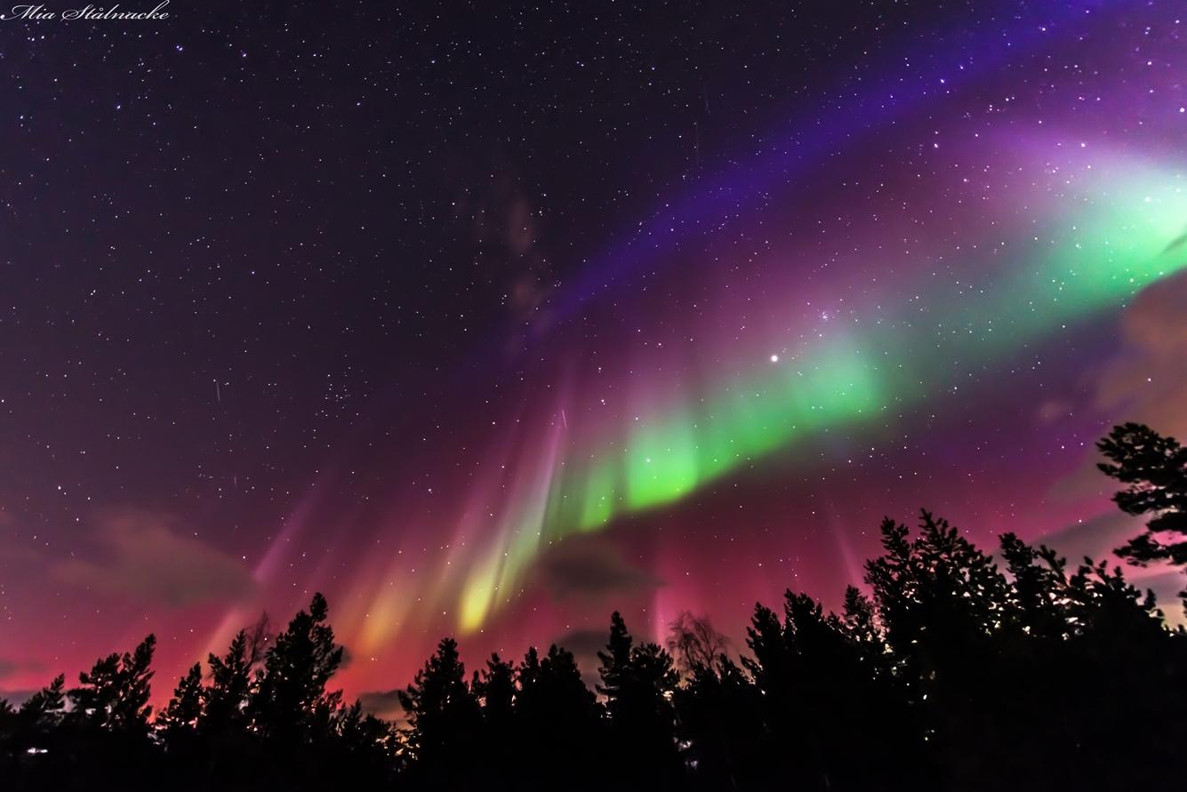 AuroraFlag Stalnacke