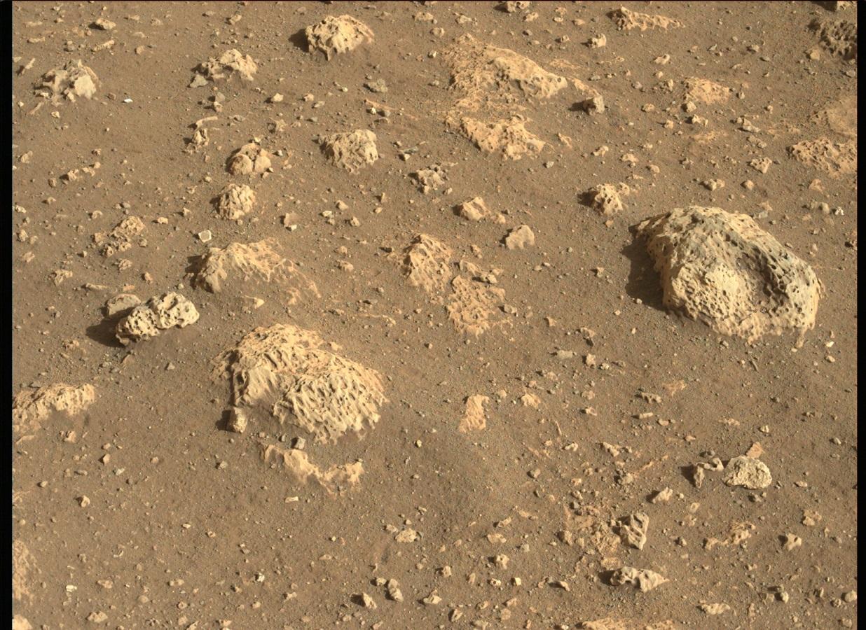 Mars Perseverance ZLF FDR NAUT J