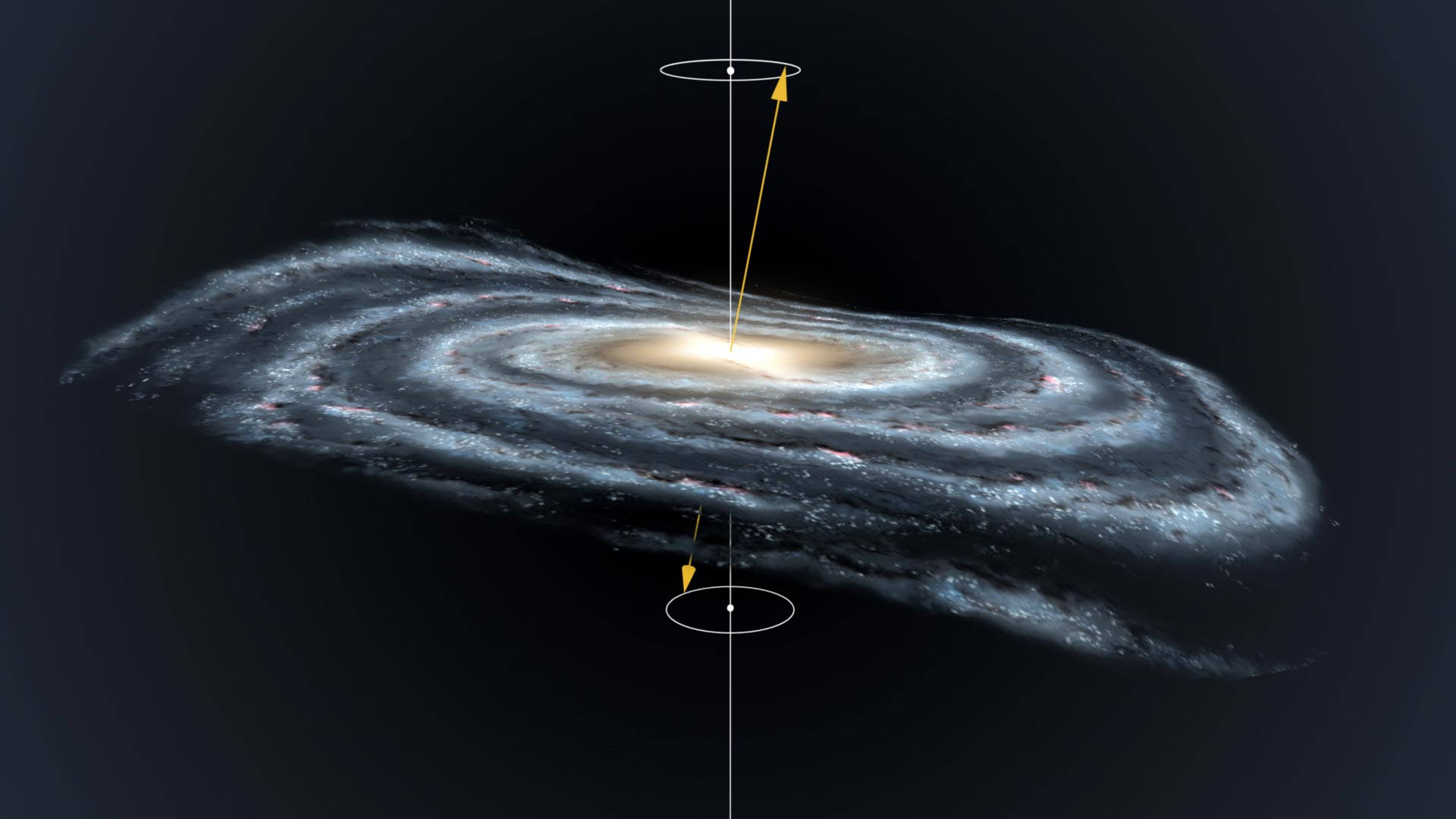 Milky Way Disc Precessing Warp