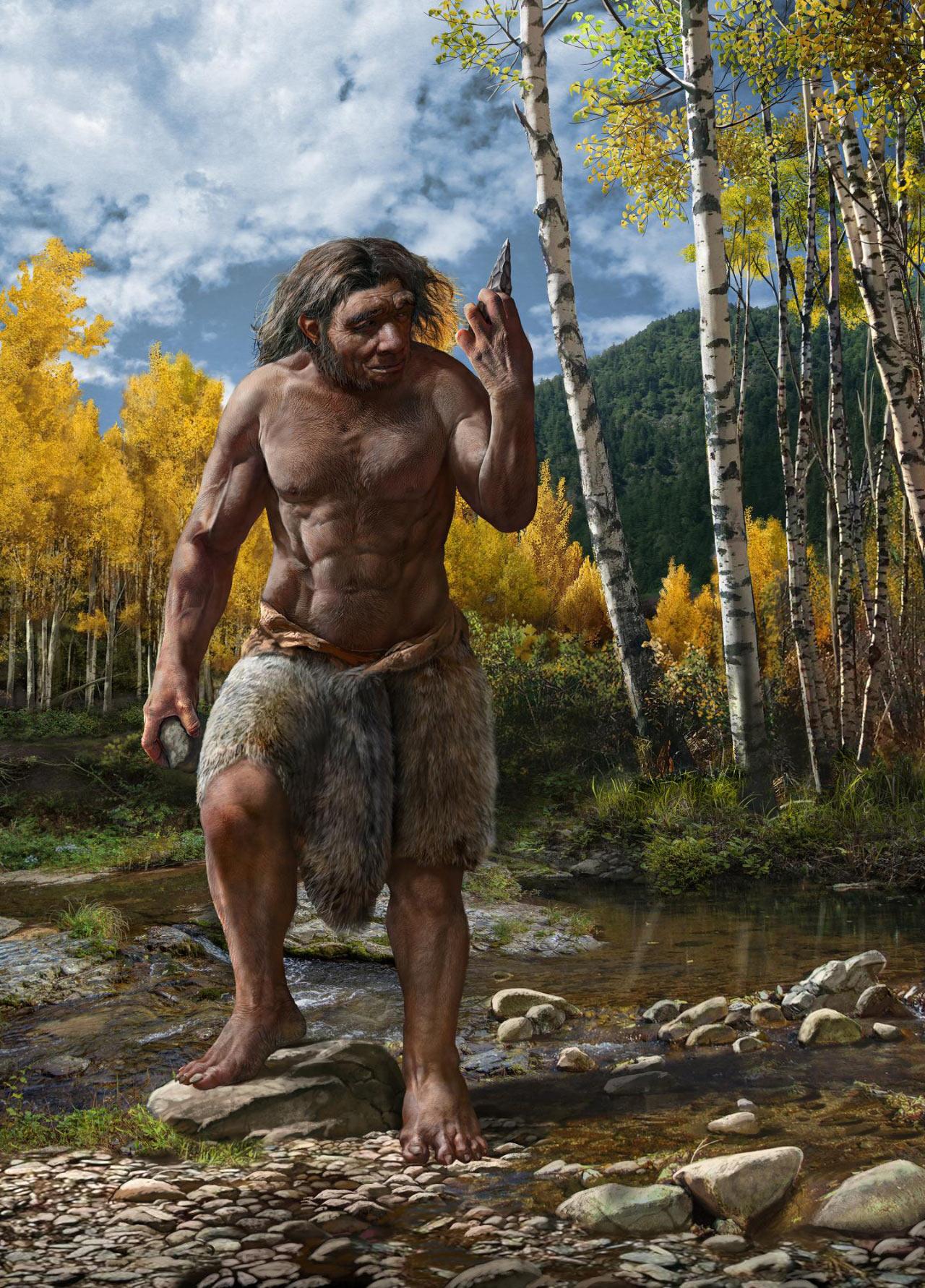 image e Homo longi