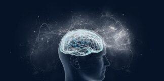 emberiagyszamitogepneuralishalozatshutterstock